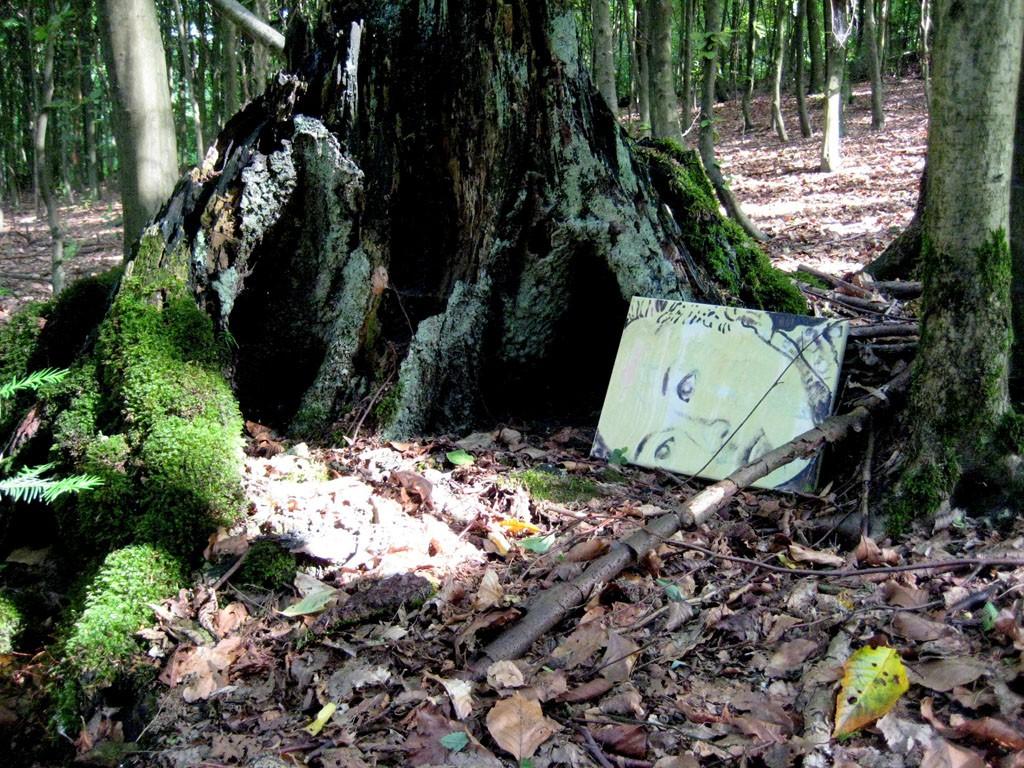 Polly im Wald 2