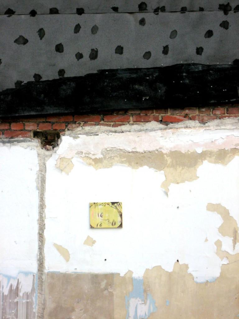 Polly auf der Hauswand