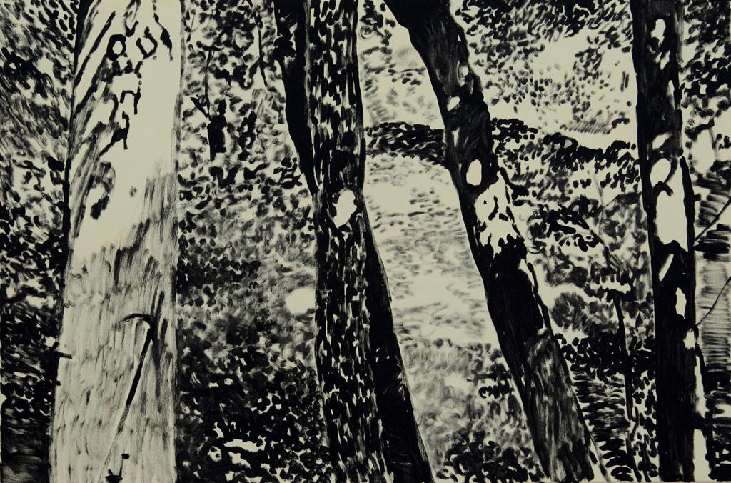 Lichter, 80x120
